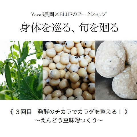HP用JPEG